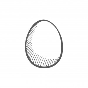 Egg Sketch (BW)